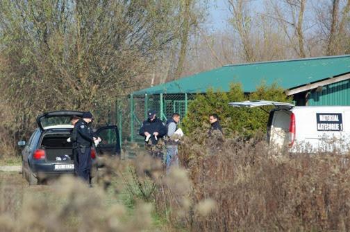 Tomislav Miletić/PIXSELL U prihvatilištu je pronađeno 44 uginula psa