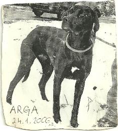 pismo-arga1
