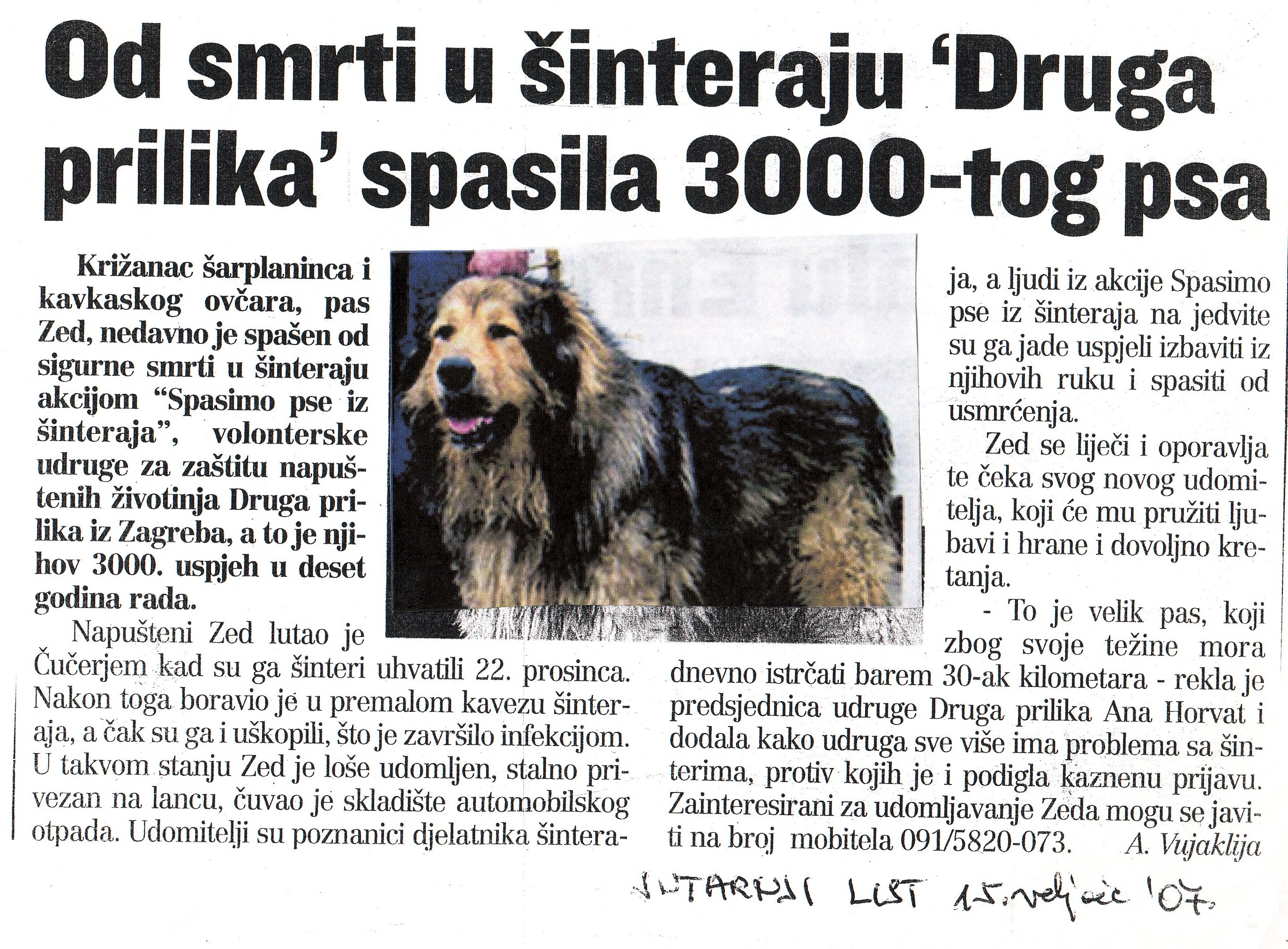 od_smrti_drugaprilika_spasila_3000_psa